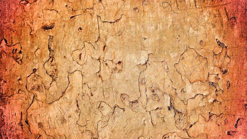095354: Old Plaster