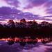 Pt. 1 - Sun vs. Clouds: Feb 21, 2015 Sunrise - Melbourne, Florida by Michael Seeley