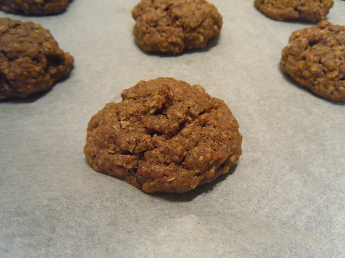 Oatmeal cookie close-up