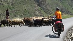 Cycling Iran 2016