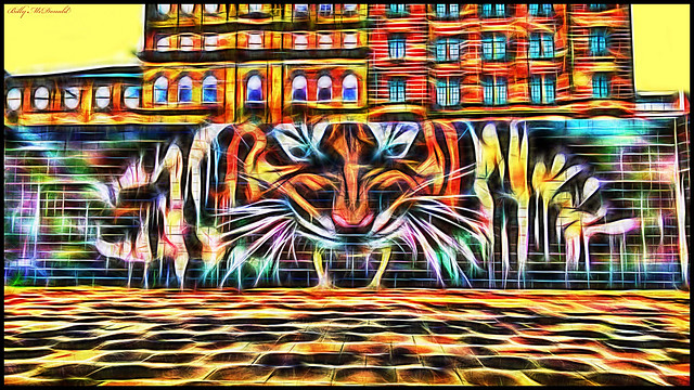 Tiger at the Clyde