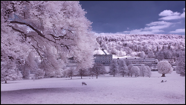 Chatsworth House and Trees- Infra Red Colour