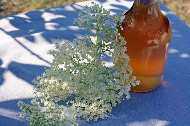8957300460 05311c6a28 z Elderflower cordial