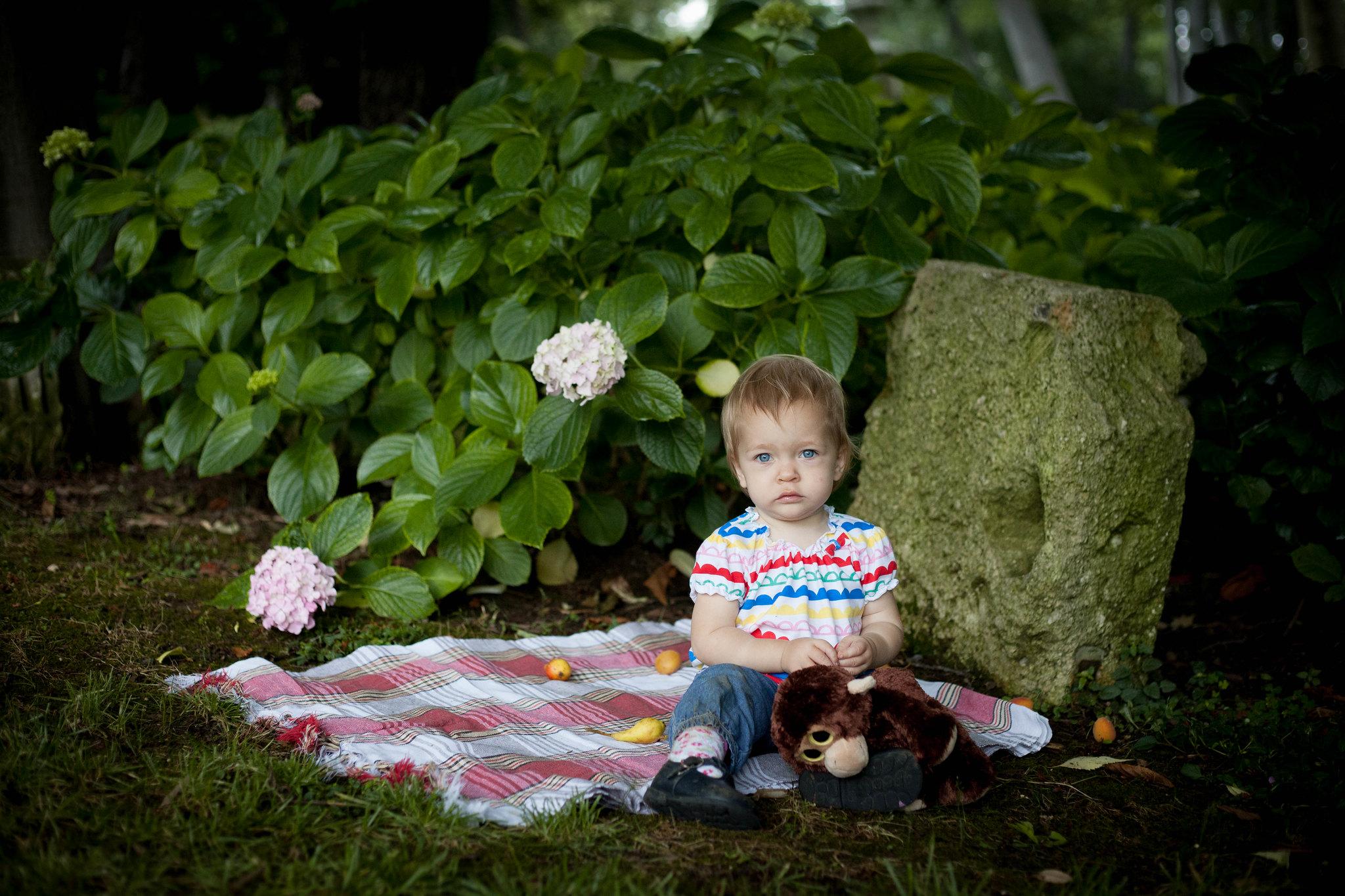 Monkey's picnic.