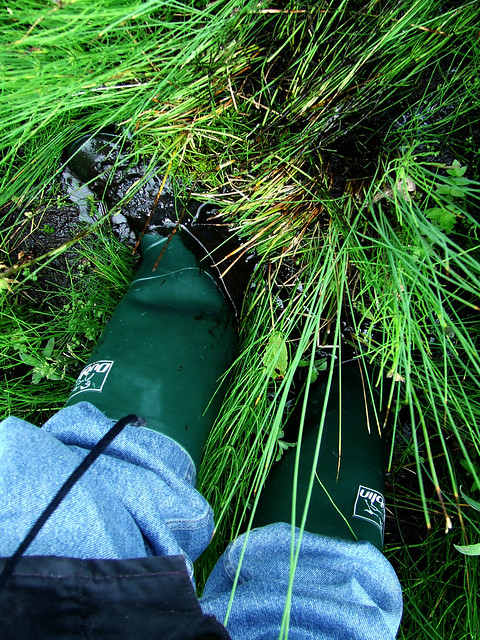 baptising the new wellies