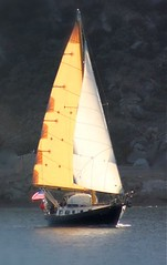 sailing ship(0.0), dinghy(0.0), ship(0.0), galway hooker(0.0), thames sailing barge(0.0), lugger(0.0), galeas(0.0), tall ship(0.0), scow(0.0), dinghy sailing(0.0), sail(1.0), sailboat(1.0), sailing(1.0), keelboat(1.0), vehicle(1.0), sailing(1.0), mast(1.0), watercraft(1.0), boat(1.0),