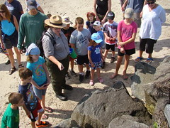 Cape Cod Canal Beach Exploration