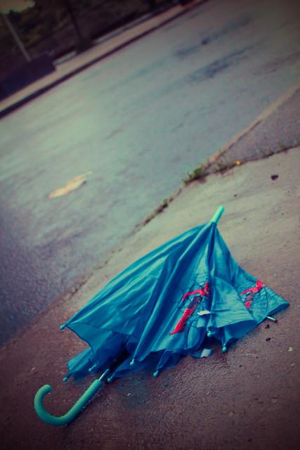 Albany_Hawk Street Umbrella