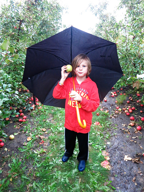 applepicking6-1013