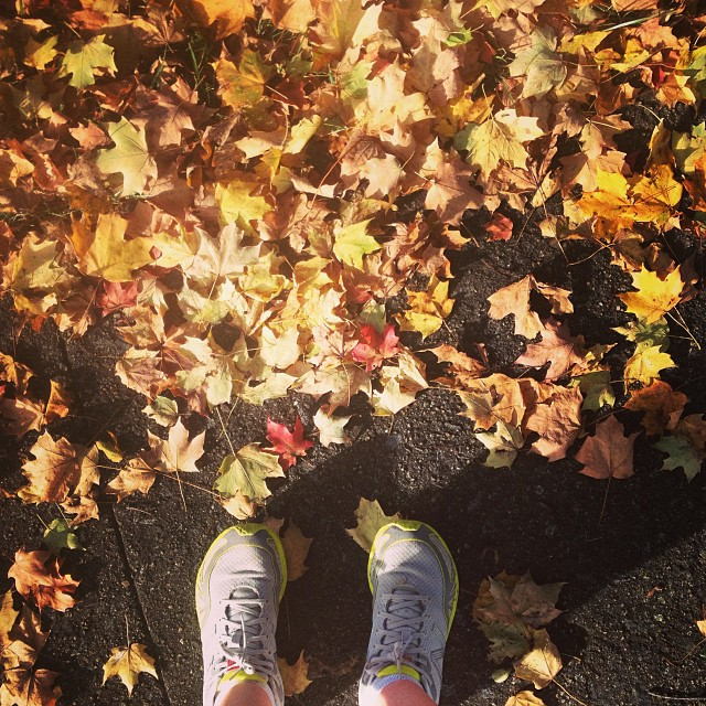 I can't stop myself from taking leaf photos. #iloveautumn #foundwhilerunning