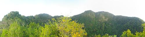 trees mountains netherlands volcano statia sinteustatius thequill