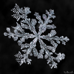 Snowflake: Shifting Gears