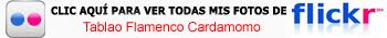 Haz clic aquí para mis fotos del Tablao Cardamomo de Madrid en Flickr Pasión por el flamenco en el Tablao Cardamomo de Madrid - 11499760424 4ae0afc454 o - Pasión por el flamenco en el Tablao Cardamomo de Madrid
