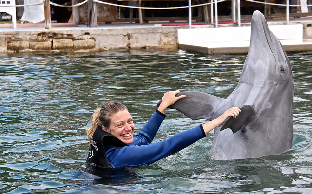 Swimming with Dolphins - Key Largo, Florida - dancing with a dolphin
