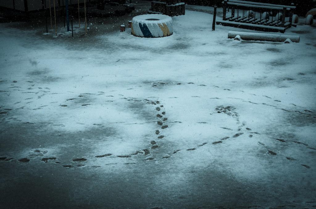 Snowyday_5