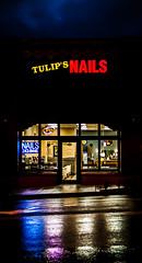 Tulip's Nails