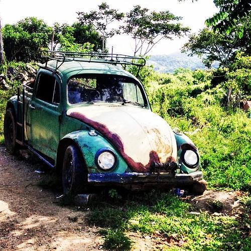 Mutante mutilado #fusca#tosba #beetle #besouro #kupla #kever #maggiolino #ico #volkwagen #vocho #herbie #coche #coccinelle #fusquinha #fuscão #kafer #käfer #carro #antigo #vintage #itabuna #bahia #brasil #hobby #euviumfusca #pichirilo #escarabajo #garbus