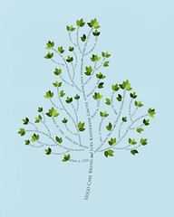 Family tree with names art light blue brown present day green leaves dates 3