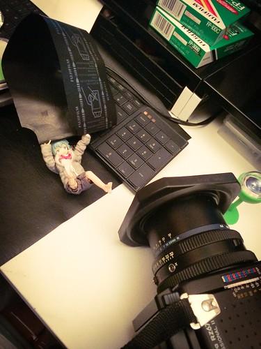 カメラロール-6169
