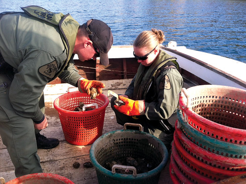 Two officers check a waterman's catch.