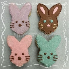 Honey's Cakes, making Rice Krispies treats cute since 2014.   #ccssweets  #eastersweets #yummybunny @ccssweets  #honeyscakes