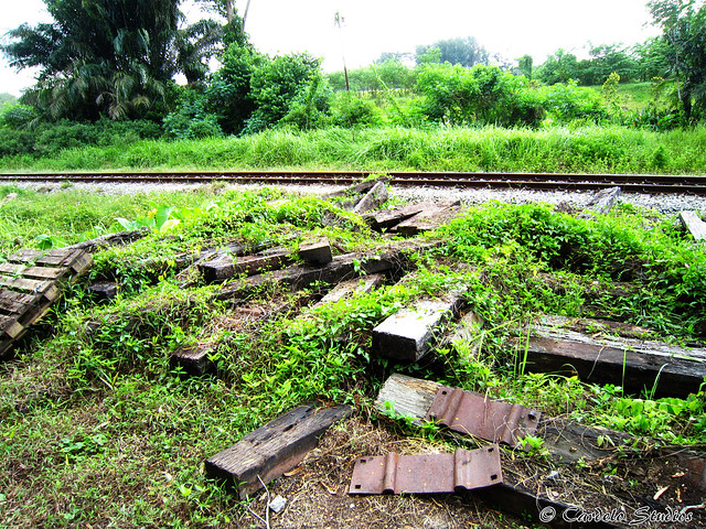 KTM Railway Track - Jurong Branch Line 01