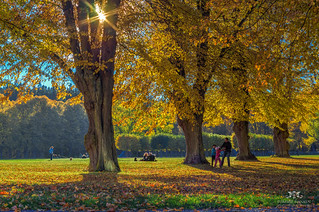 The park at Ulriksdals Slott in fall | by Tommie Hansen