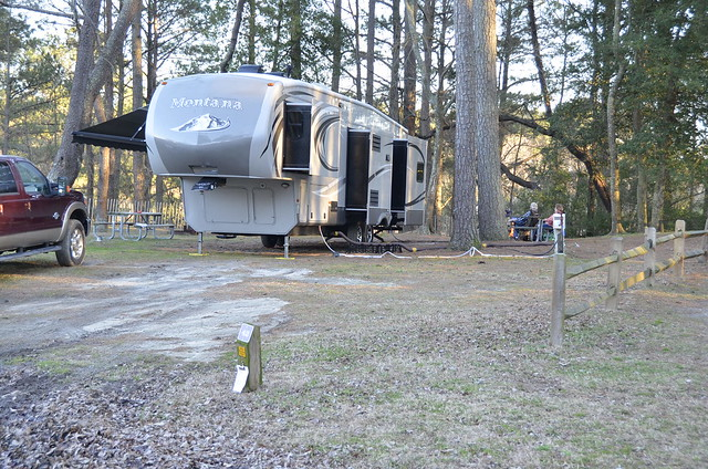 Campsite 42 is very private and has trees at Kiptopeke State Parks