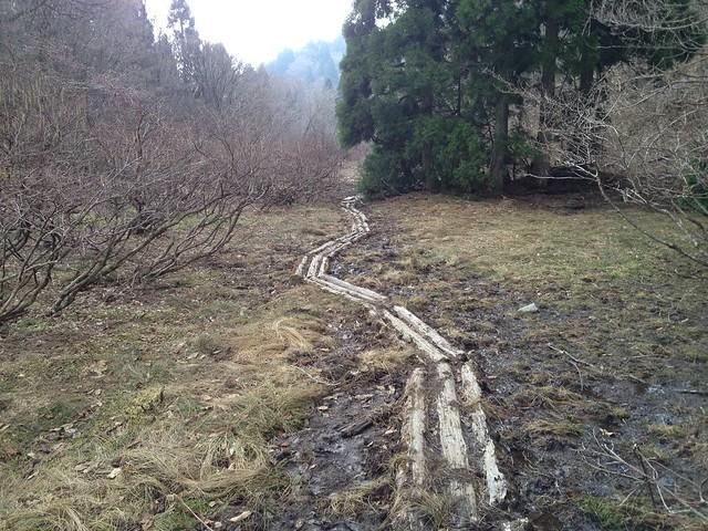 武奈ヶ岳 木道