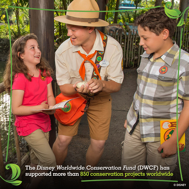 disneyinstitute-How Green Is Your Organization?