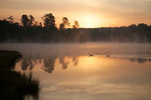 camp mist lake sunrise georgia waterfowl