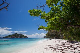 長さ 241 メートルのビーチ の画像. seychelles ladigue grandesoeur