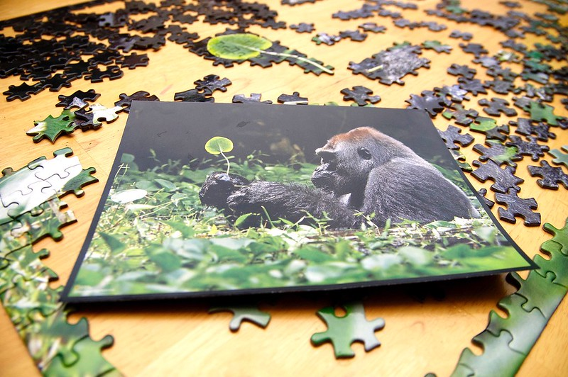 47/365. the cute puzzle that has stolen our dining room table.