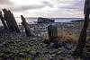 Victoria Dock Wreck#2 by dark_myson