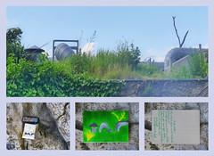 Postcard to Wolle (wpt1967): Roof Polar Bear Compound Zoo Schönbrunn Rundgang Tiergarten Dachlandschaft Eisbärenwelt Franz Josef Land Ansichtskarte mit Antwort