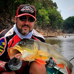 Luiz Guerra da Goiano Custon Roads com um tucunaré do Rio Juma-AM  #pesqueesolte #baitcast #fly #tucunare #pavone #pavon #peacock #peacockbass #monsterfish #anglerapproved #amazonia #amazon #pescaesportiva #sportfishing #fishing #flyfishing #fish #bassfis