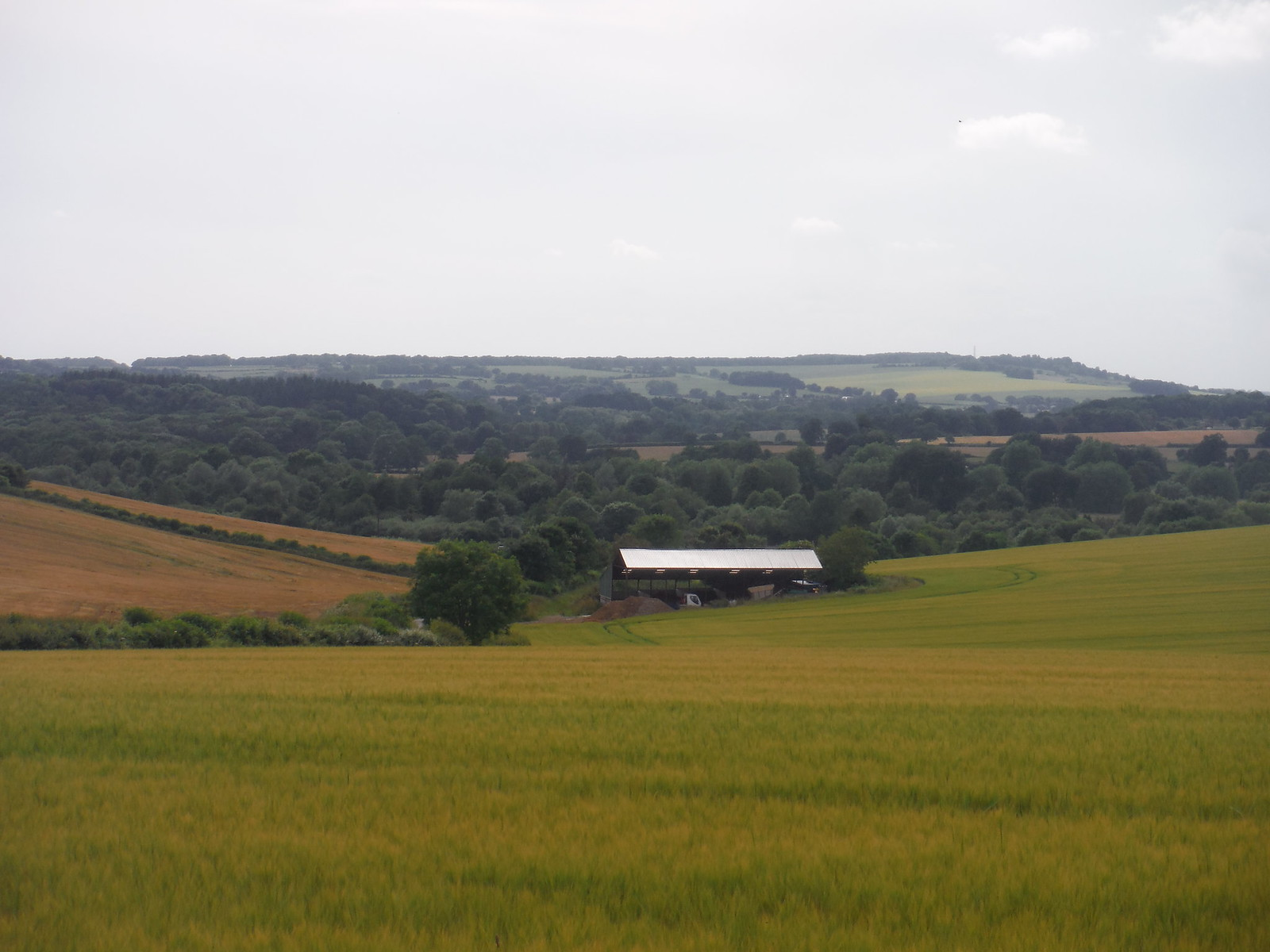 South Westerly Views from Michelmersh SWC Walk 265 - Dean to Mottisfont and Dunbridge