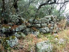 Alentours du site : vestiges d'enceinte à l'Est (?)