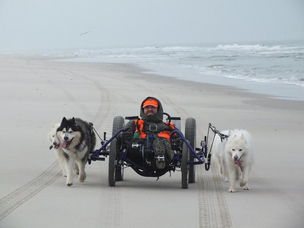 rod track quad woofdriver