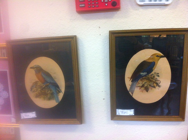 thrift store bird art