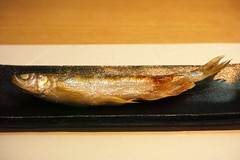 herring(0.0), mackerel(0.0), fish(0.0), cod(0.0), pacific saury(0.0), sauries(0.0), sardine(0.0), animal(1.0), smoked fish(1.0), fish(1.0), seafood(1.0), food(1.0), shishamo(1.0), cuisine(1.0),