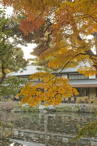 【写真】2013 紅葉 : 白沙村荘/2020-12-28/IMGP3688