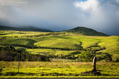 usa verde green hawaii us nikon unitedstatesofamerica waimea nikkor d4 bigislandofhawaii southkohala 2470mmf28g kohaladistrict 2013060718505