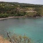 Dolphin cove, Maui