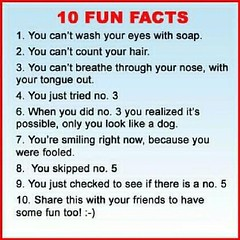 10funfacts