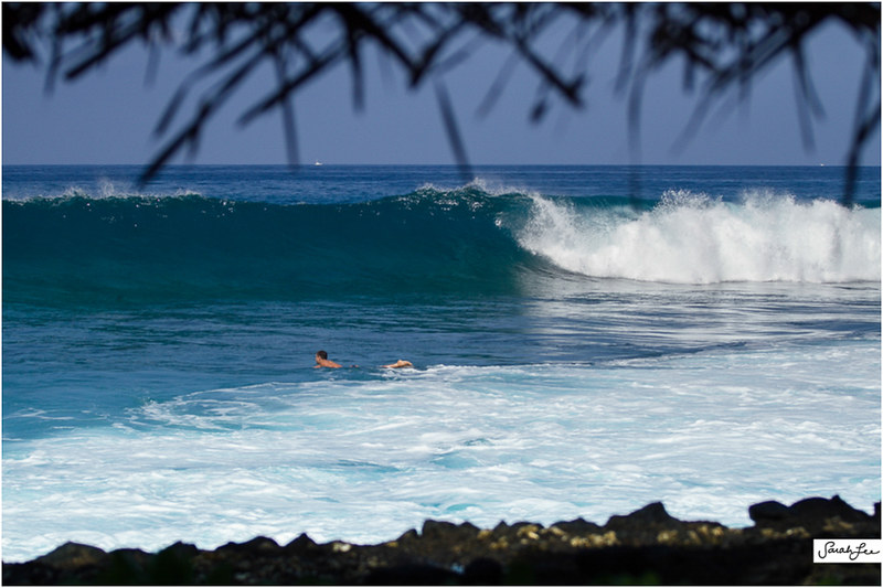 33-surfing-south-swell-kona-hawaii.jpg