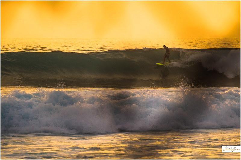 7_CJ_Kanuha_Kona_Banyans_Swell_Surf.jpg