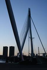 Erasmus Bridge silhouette