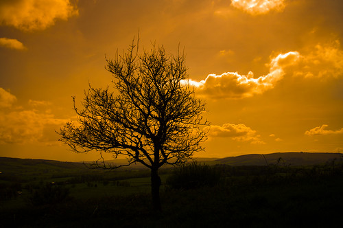 scotland scenery scenic lochlomond duncrynehill thedumpling
