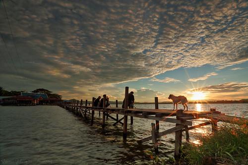 wood bridge sunset sun lake landscape papua danau sentani jayapura
